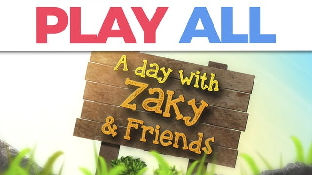 A Day With Zaky & Friends Collection