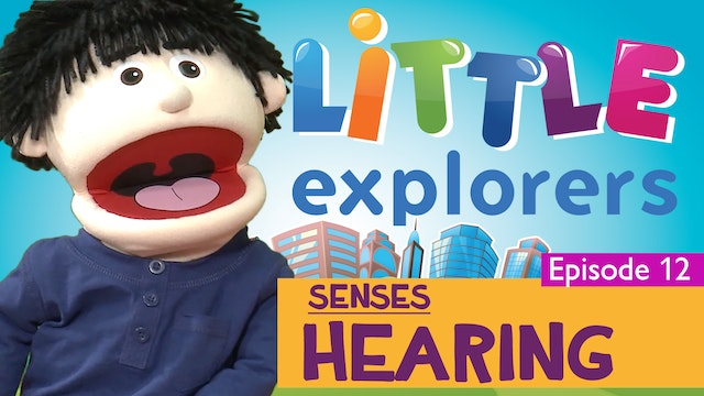 Little Explorers - Senses Hearing
