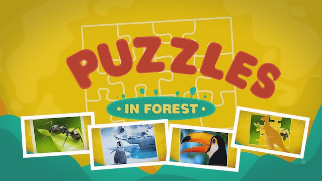 Puzzles In The Forest