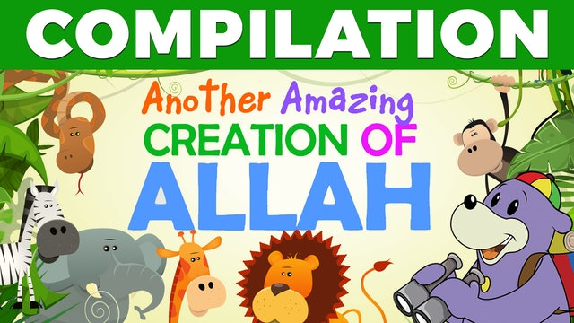 AMAZING Creations of ALLAH with Zaky - COMPILATION