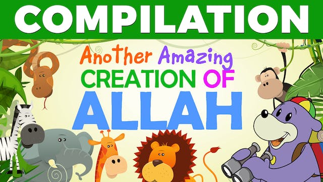 AMAZING Creations of ALLAH with Zaky ...