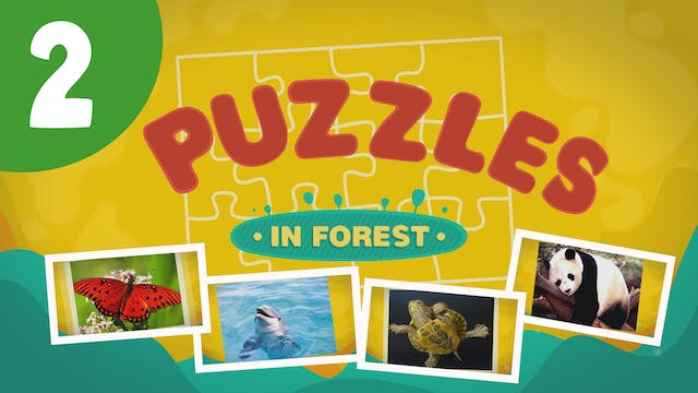 Puzzles in the Forest (ep2) Let's try...