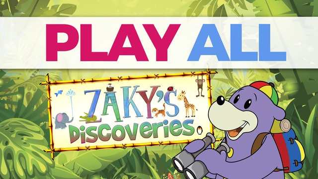 Zaky's Discoveries Collection