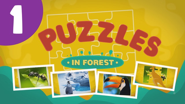 Puzzles in the Forest (ep1) Let's try and solve five different puzzles!