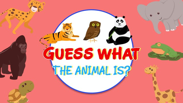 Guess What The Animal is? - EP7