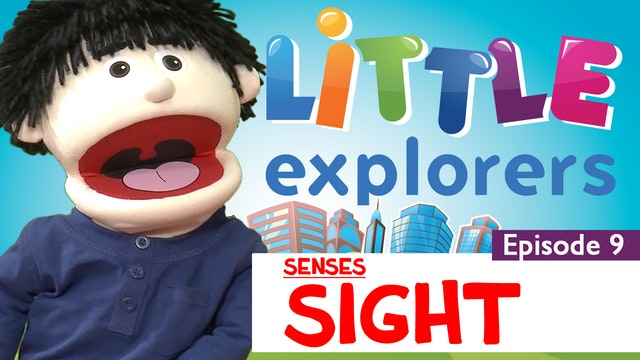 Little Explorers - Senses Sight