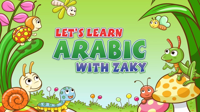 Learn Insects in Arabic