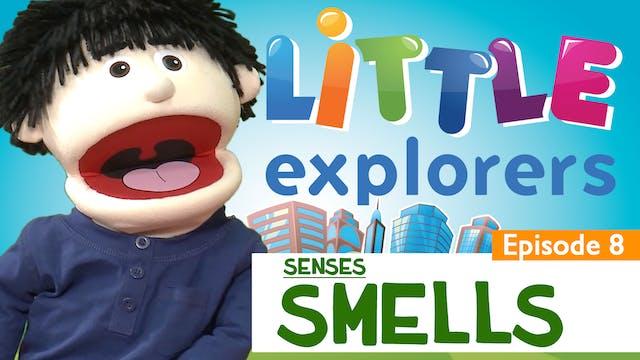 Little Explorers - Senses Smell