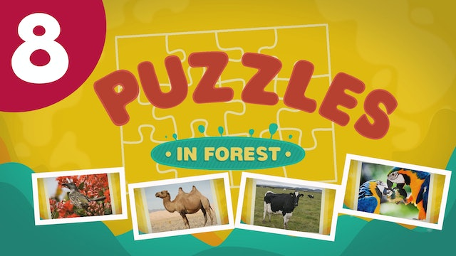 Puzzles in the Forest (ep8) Let's try and solve five different puzzles!