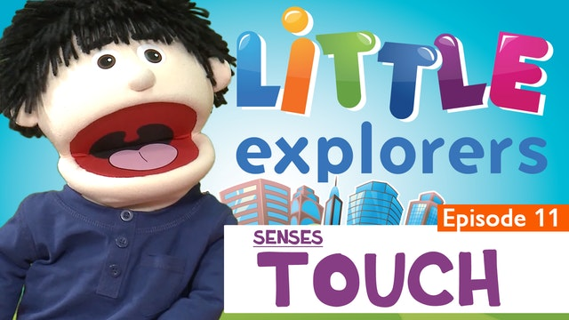 Little Explorers - Senses Touch