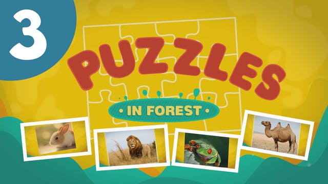 Puzzles in the Forest (ep3) Let's try...