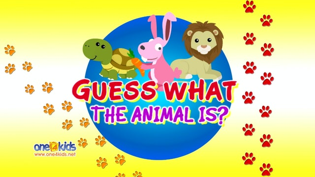 Guess What the Animal is? 3