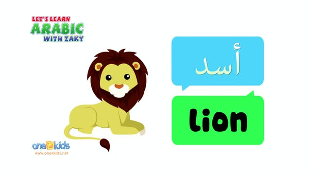 Learn Animals in Arabic