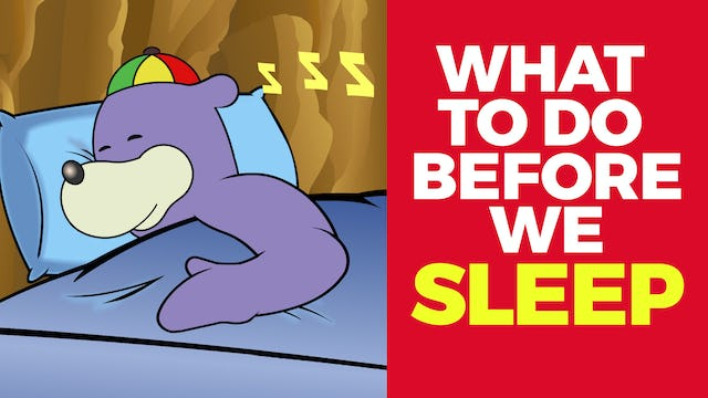 What To Do Before We Sleep