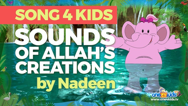 Sound of Allah's Creations