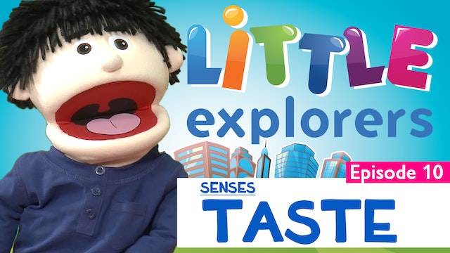 Little Explorers - Senses Taste