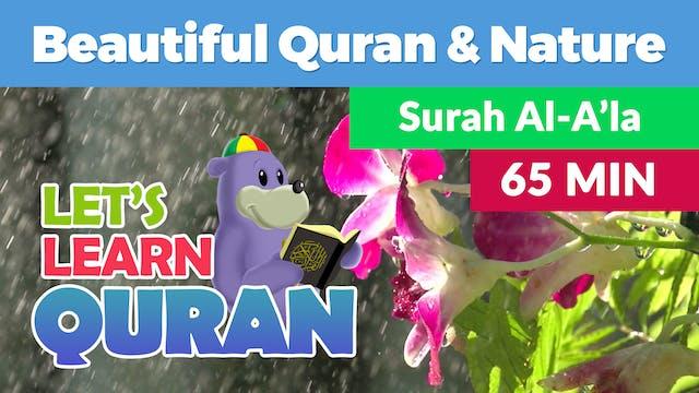 Listen, Relax & Learn Surah Al-A'la w...