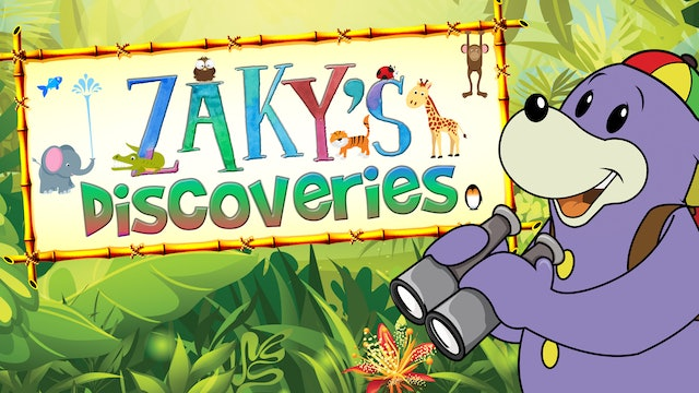 Zaky's Discoveries