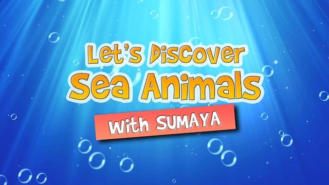 Zaky Discovers Sea Creatures