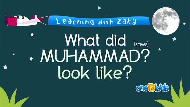What Did Muhammad (saws) Look like?