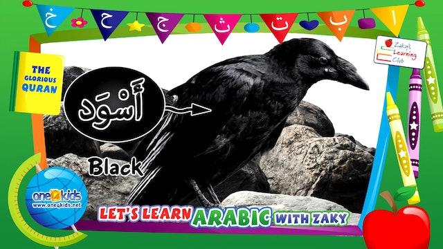 Learn the Arabic Colours