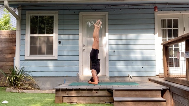Collette Hill - Flow + Headstand