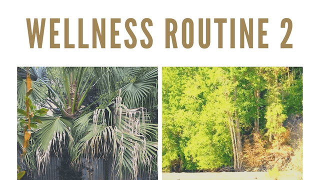 WELLNESS ROUTINE 2 - BREATHE-RESTORE.pdf