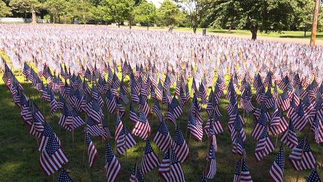 Field of Flags Honors Our Fallen Soldiers