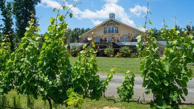 North Carolina Wine Series: A Wine Festival and A Science Lesson