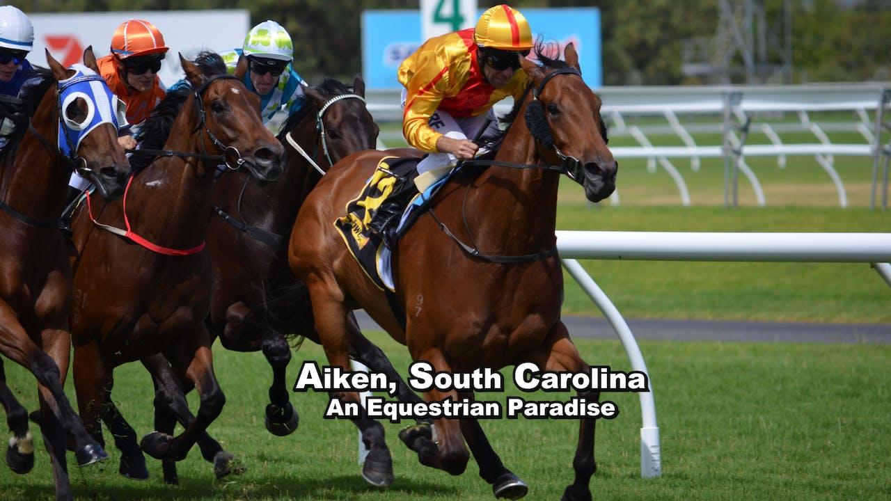 Aiken, SC: An Equestrian Paradise