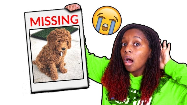 OUR DOG IS MISSING!