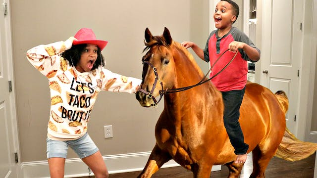 Shiloh and Shasha Get a Horse!