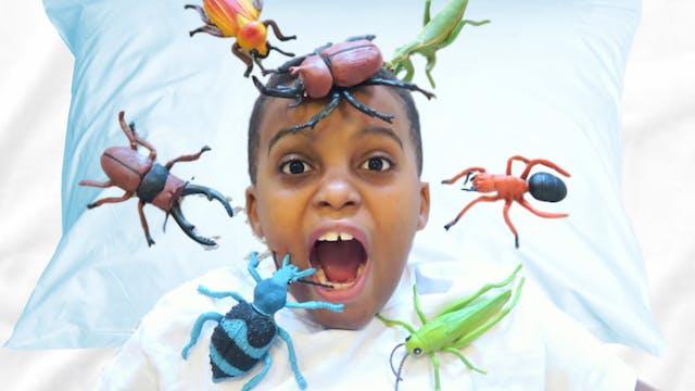 1,000 Bugs Attacks Shiloh!