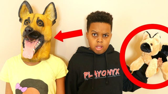 We Turned Into Dogs!