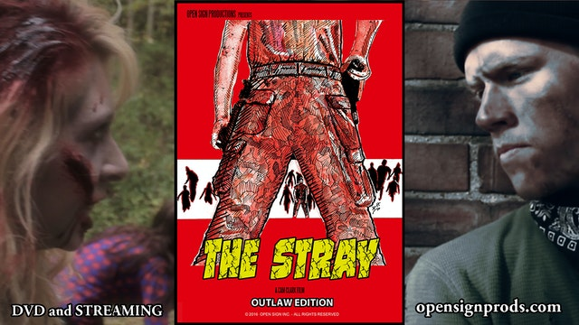 The Stray - Outlaw Edition