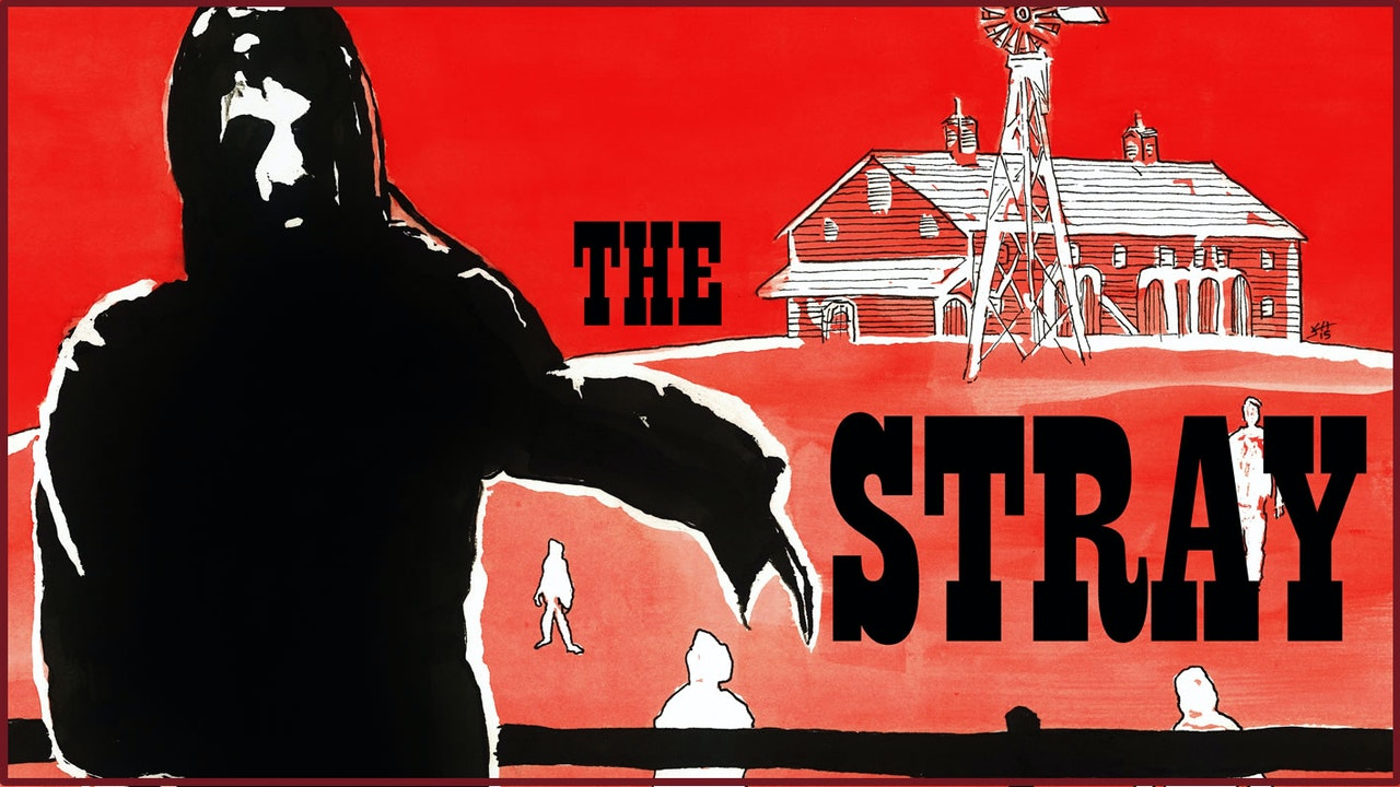The Stray
