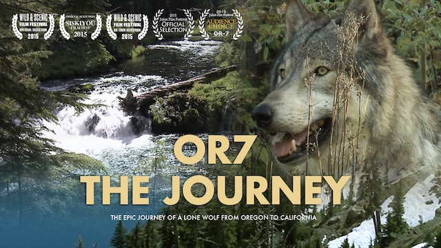 OR7 - THE JOURNEY