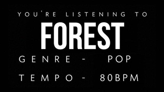 Forest Practice Loop