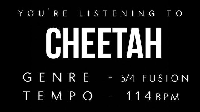 Cheetah Practice Loop