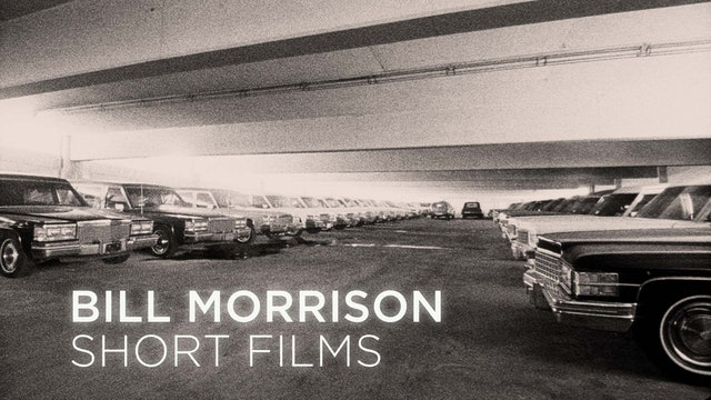 Bill Morrison Shorts