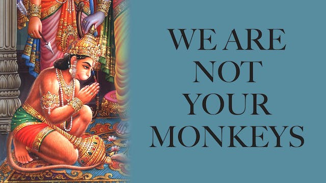 We are Not Your Monkeys