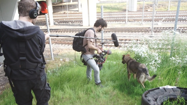Behind the Scenes with Space Dogs