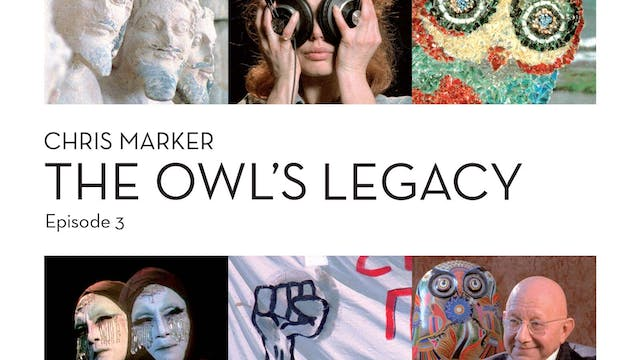 The Owl's Legacy: Democracy, or City ...