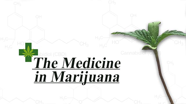 The Medicine in Marijuana