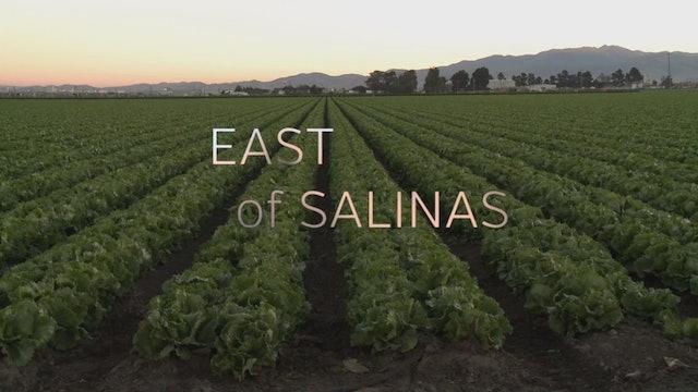 East of Salinas