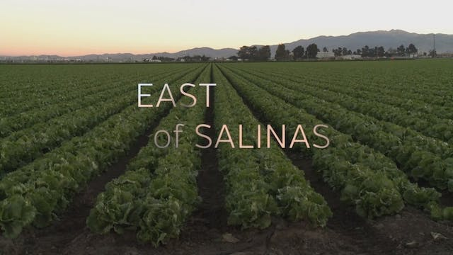 East of Salinas