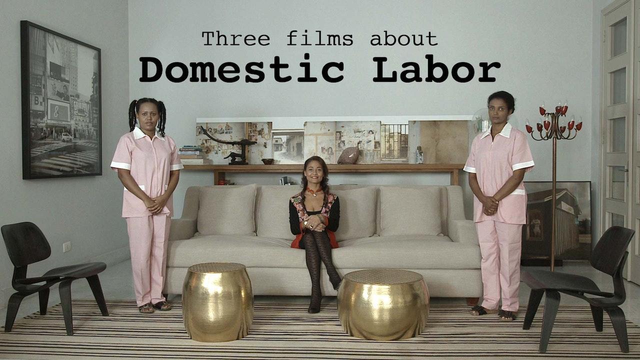 Domestic Labor