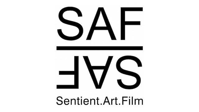 Sentient.Art.Film