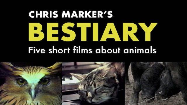 Chris Marker's Bestiary