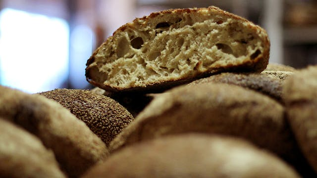 The Trouble with Bread